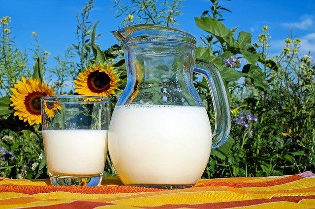 Gør mælken selv derhjemme – og pickles, gode for tarmbakterierne!