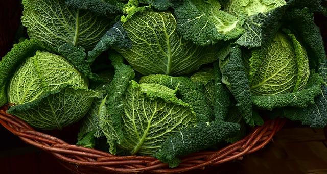 Plantebaseret kost er fremtiden – men vil danskerne gå med til det?